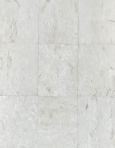 Coral Reef White Honed & Filled Tiles