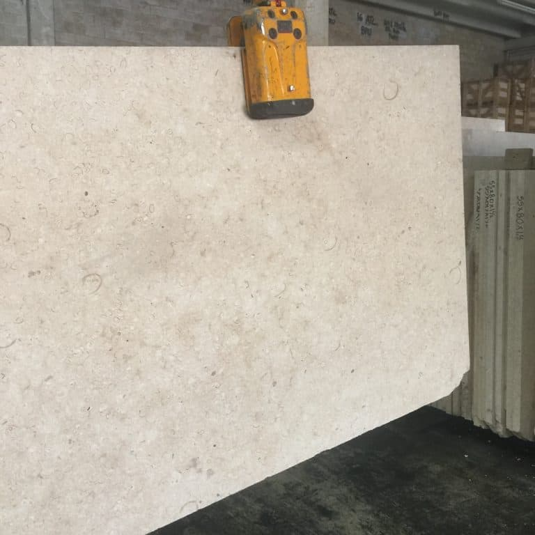 Atlantic Shell Stone, Honed Unfilled, 1.5 Inch Thick, Slabs