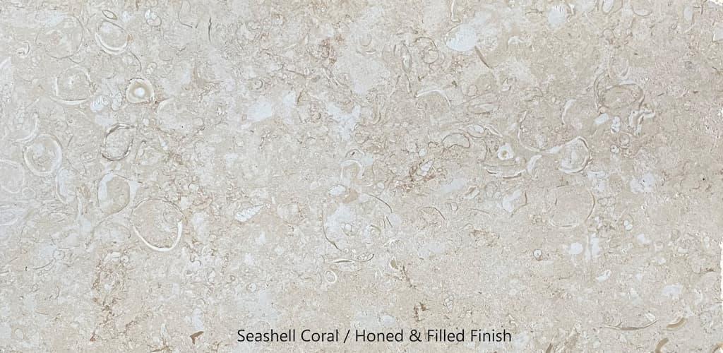 seashell coral h&f #2 florida