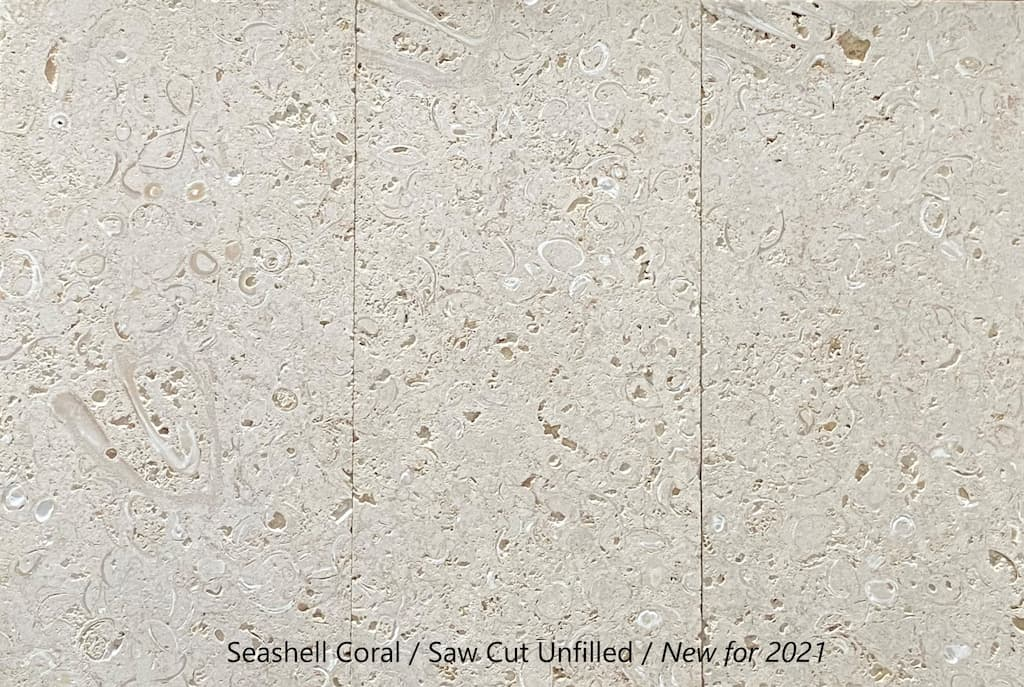 seashell coral saw cut new for 2021 florida