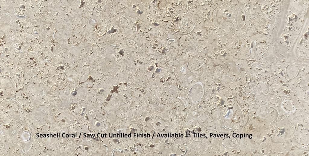 seashell coral, saw cut unfilled finish florida